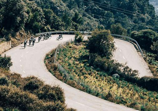 Koopgids: Carbon racefietsen tot €2500