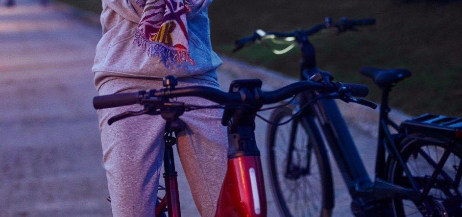 De elektrische fiets begrippenlijst