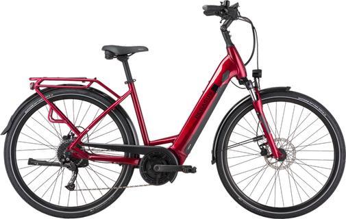 Pegasus Solero EVO 9 Blackberry Red 2021