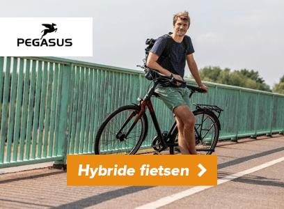 Pegasus hybride fietsen