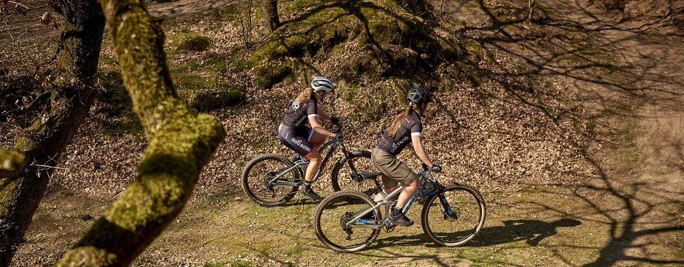 wielmaat mountainbike 27,5 of 29 inch